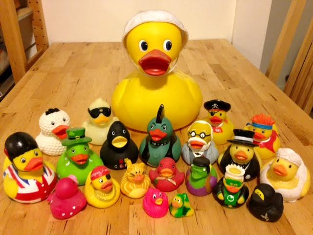 My rubber duck collection. Not pictured: myriad other types of ducks I own that don't fall into the