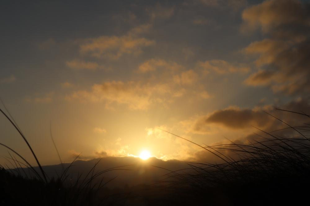 monastery sunrise with grass.jpg